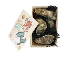 wilde wad oesters groot
